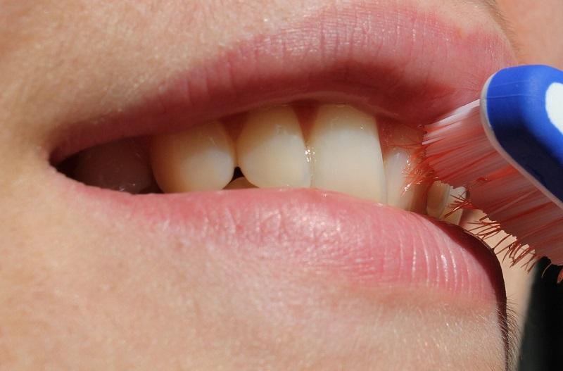 歯磨きをする女性の口の画像